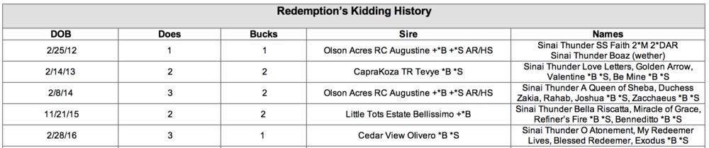 Redemption's Kidding .png