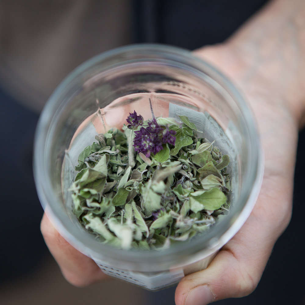 dried-herbs-in jar.jpg