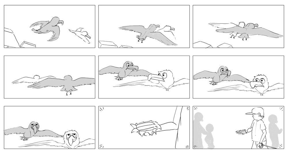seaguls-12.jpg