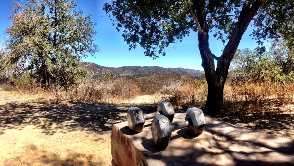 Working out at Marvin Braude Mulholland Gateway Park