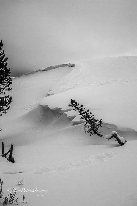 Yellowstone-20.jpg