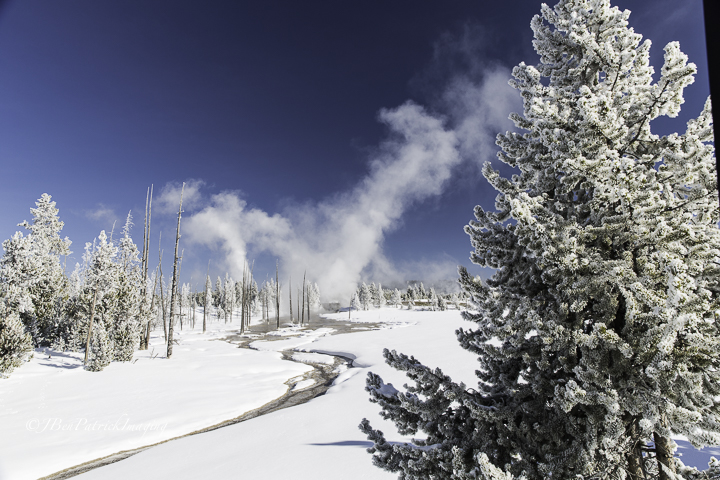 Yellowstone-65.jpg