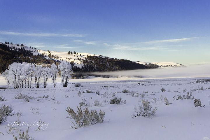 Yellowstone-68.jpg