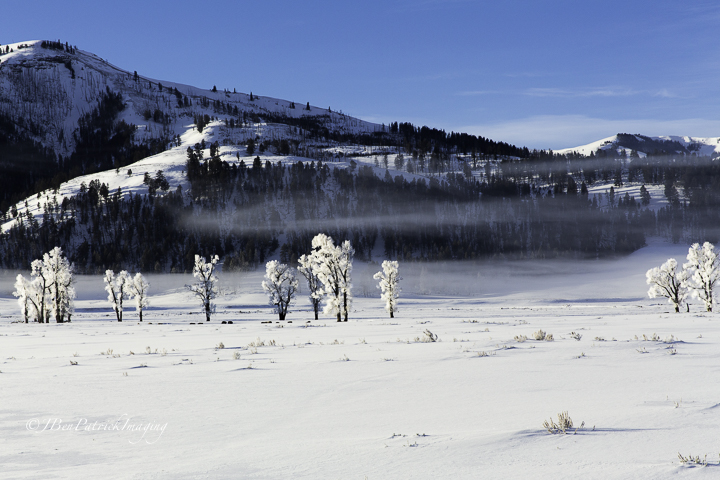 Yellowstone-77.jpg