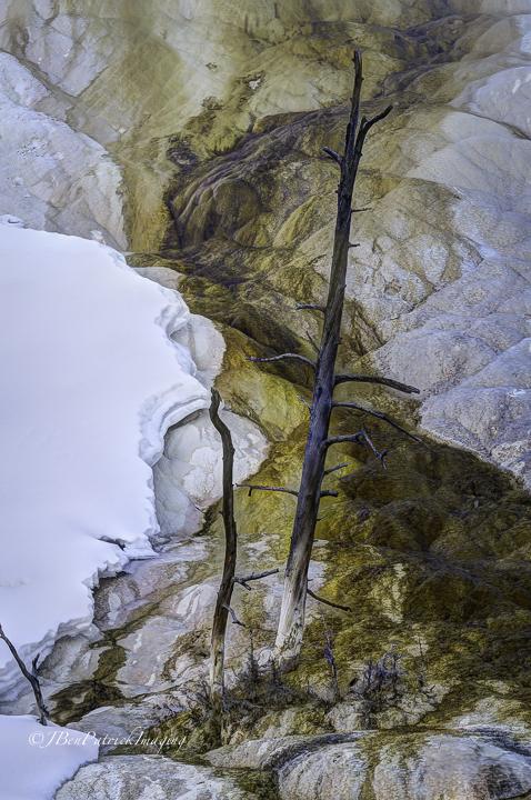 Yellowstone-94.jpg