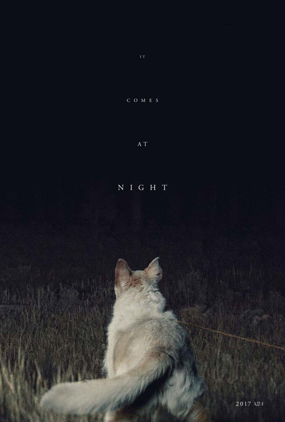 2017 It Comes At Night.jpg