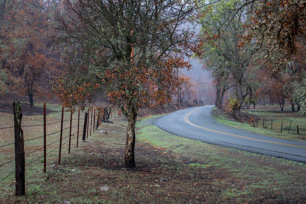 Highway 175 Cobb