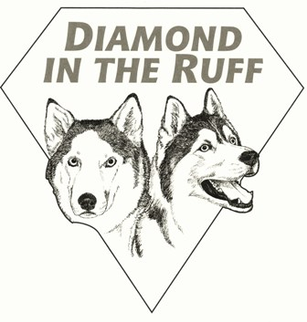 Diamond in the Ruff Pet Spa