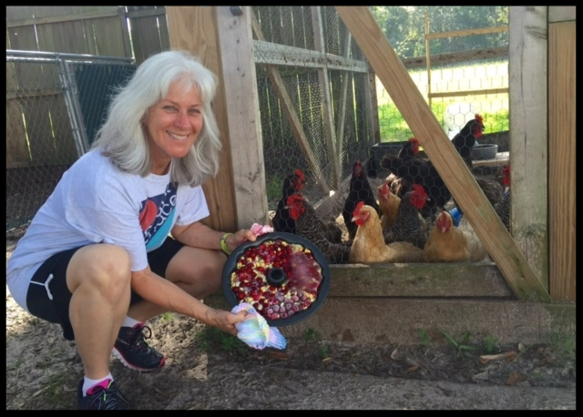 Volunteer Loretta Holtcamp brings the chickens a frozen treat to cool them down during the hot sumer months. (2016)