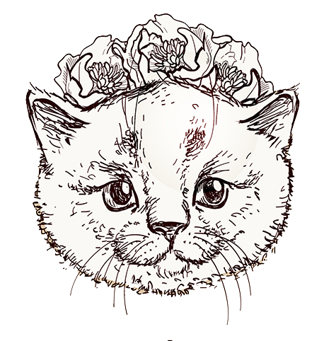Cat Icon.png