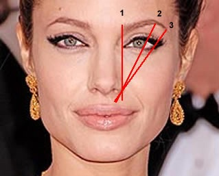 The three points are a great guide to the right brow shape and size .