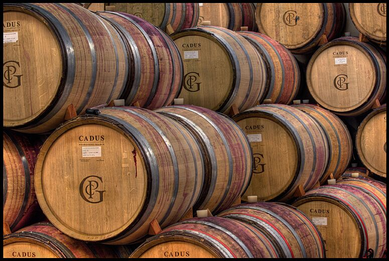 Barrel Shot (Perfect for website).jpg