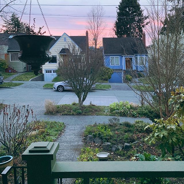 The daily nieghborly view 🏡🌅
