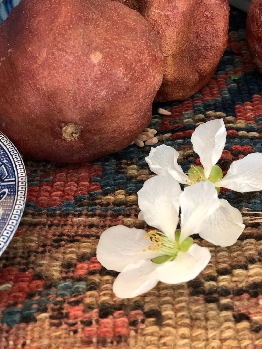 Inspiration: quince from a friend -