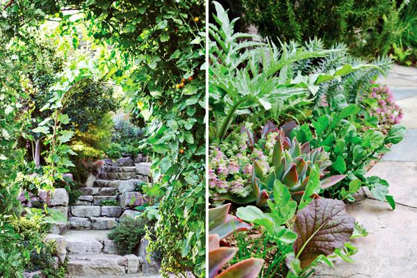 The Book Pine House Edible Gardens