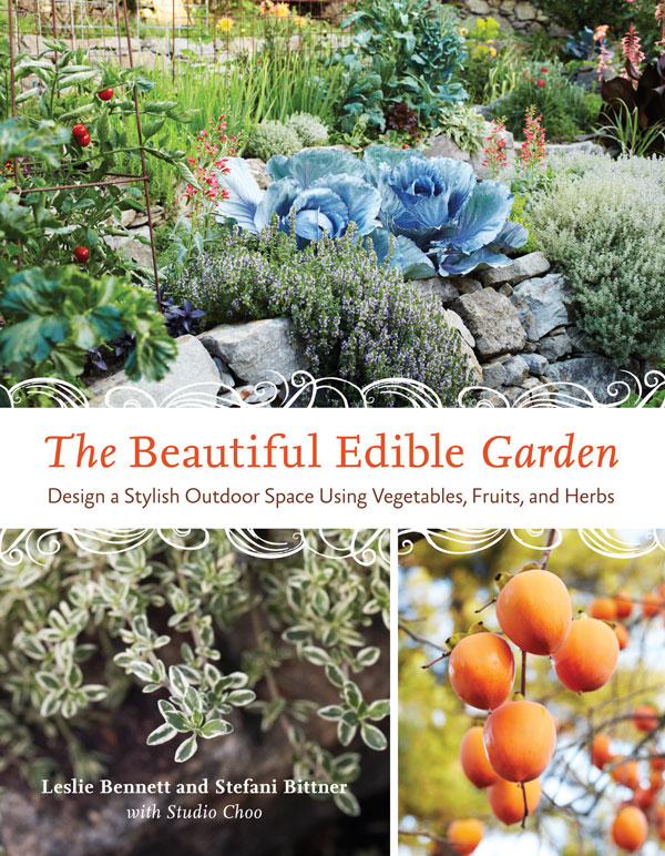 Edible Garden Ideas garden design with edible garden garden ideas pinterest edible garden garden with beautiful landscaping pictures The Beautiful Edible Garden