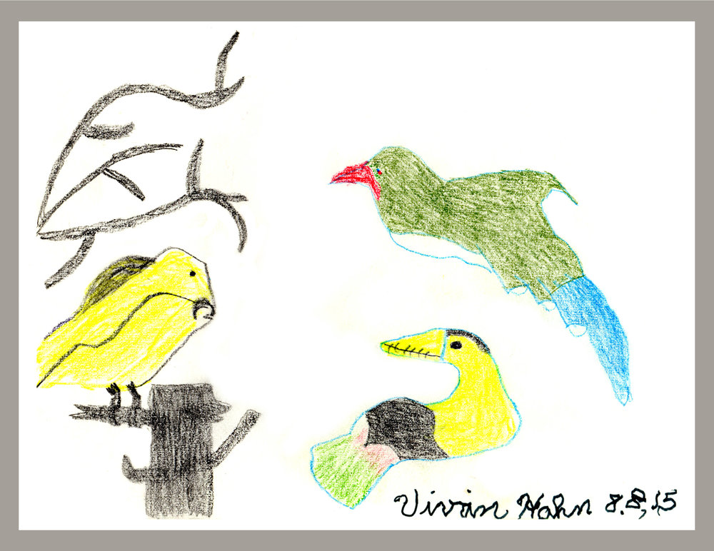 Three Birds in Yellow and Green Vivian Hahn 8/8/2015 Color Pencil on Paper Prints $20, originals $40