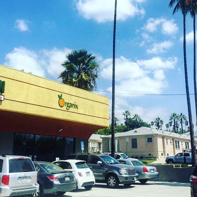 Eastsiders! Gorilla Life has a new home in Eagle Rock at Organix! Demo today 11-2. More places to get your greens! #DrinkYourGreens #Greens #Chlorophyll #DrinkLife #organix #newhome #chestpound #GorillaLife #GorillaOnTheMove