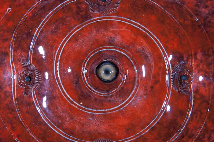 Cycloptic Stifler, detail