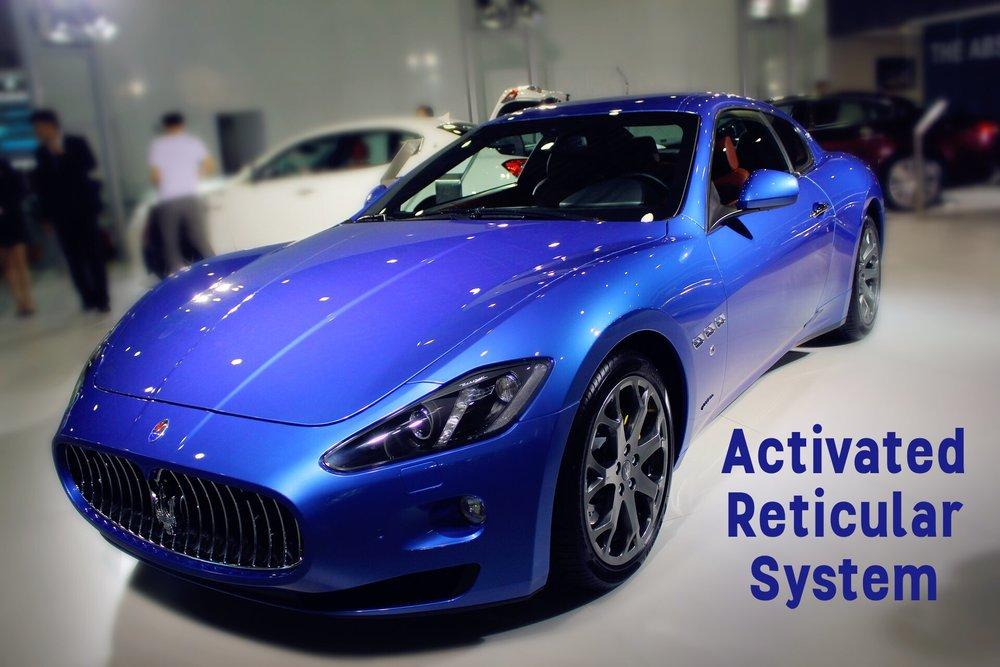 Blue Maserati.jpg