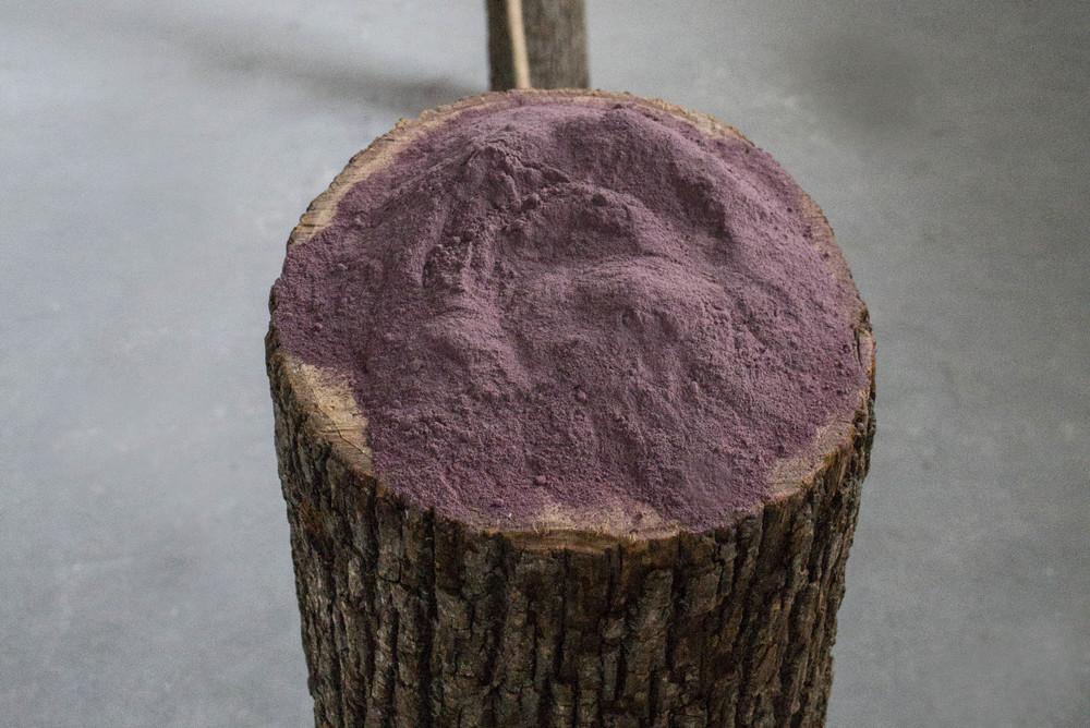 Rose pigment