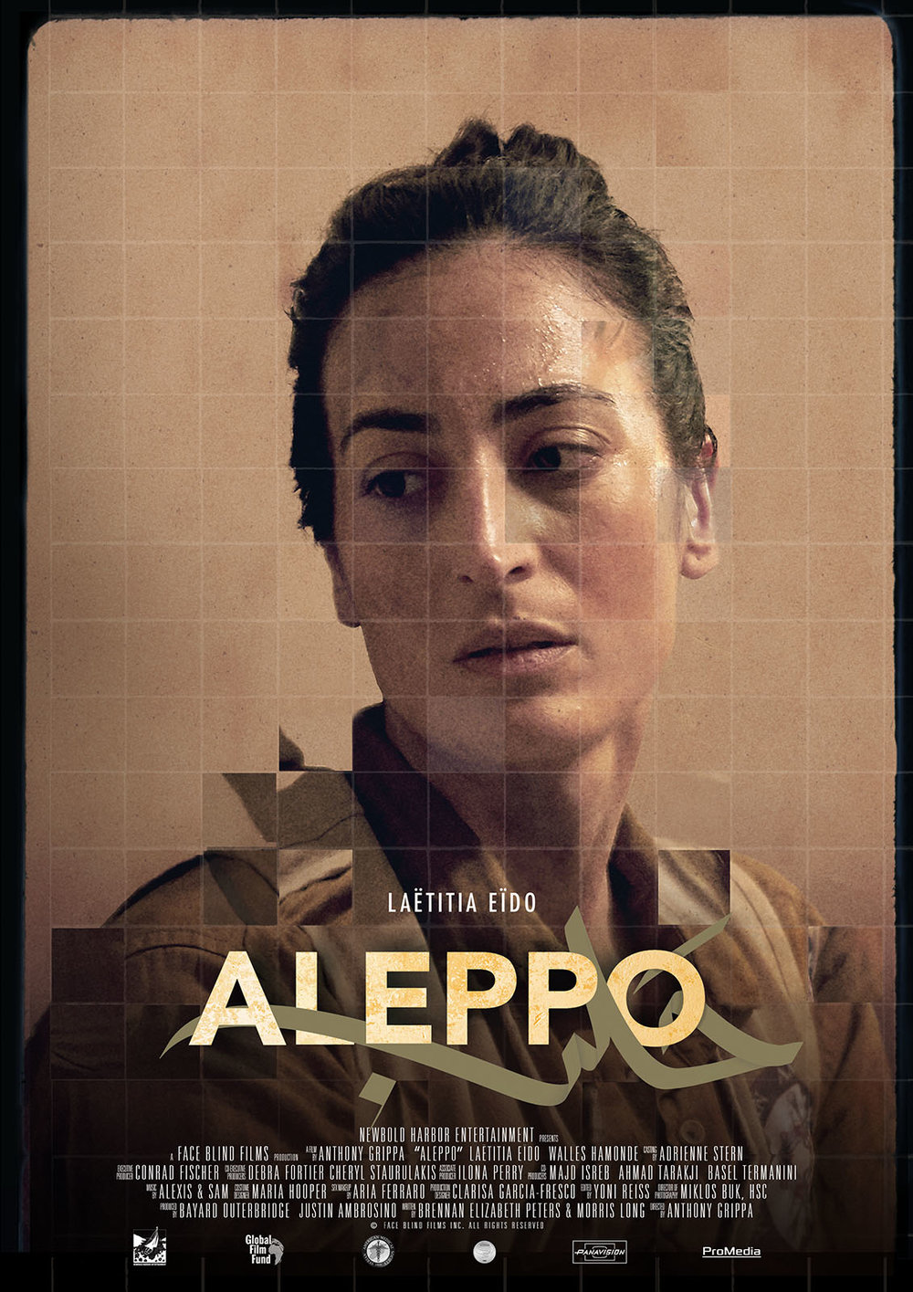 Aleppo (2019) - Hanan, a successful young Syrian-American doctor, returns to Syria to help victims of war. When the hospital where she works is bombed, she suffers a traumatic brain injury that leaves her face blind. Unable to recognize the faces of even those closest to her, Hanan's world has been turned upside down and her identity lost.Now home in New York, Hanan has difficulty coming to terms with how her life has changed following the attack. Haunted by her trauma and struggling to adjust to her condition, Hanan must confront her fear of navigating the world, putting her identity, and her future as a doctor, in doubt.