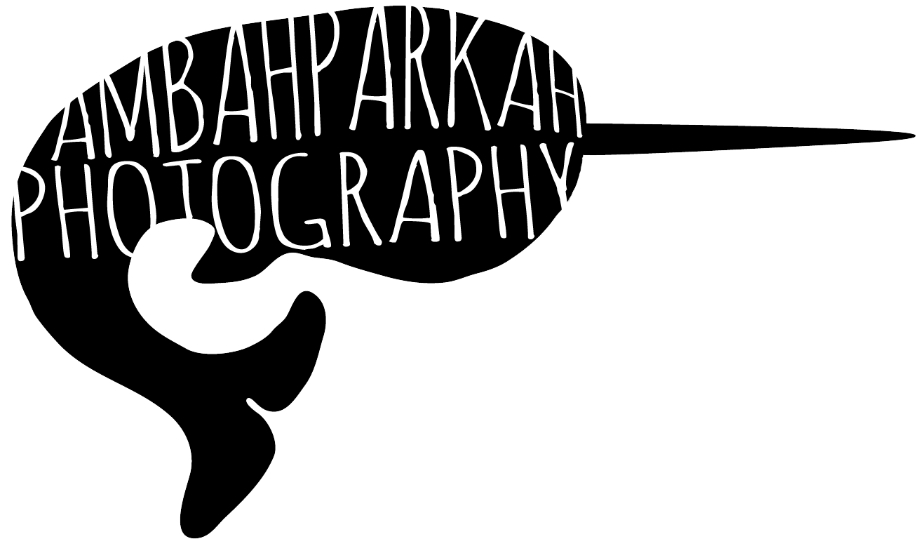 Ambah Parkah Photography