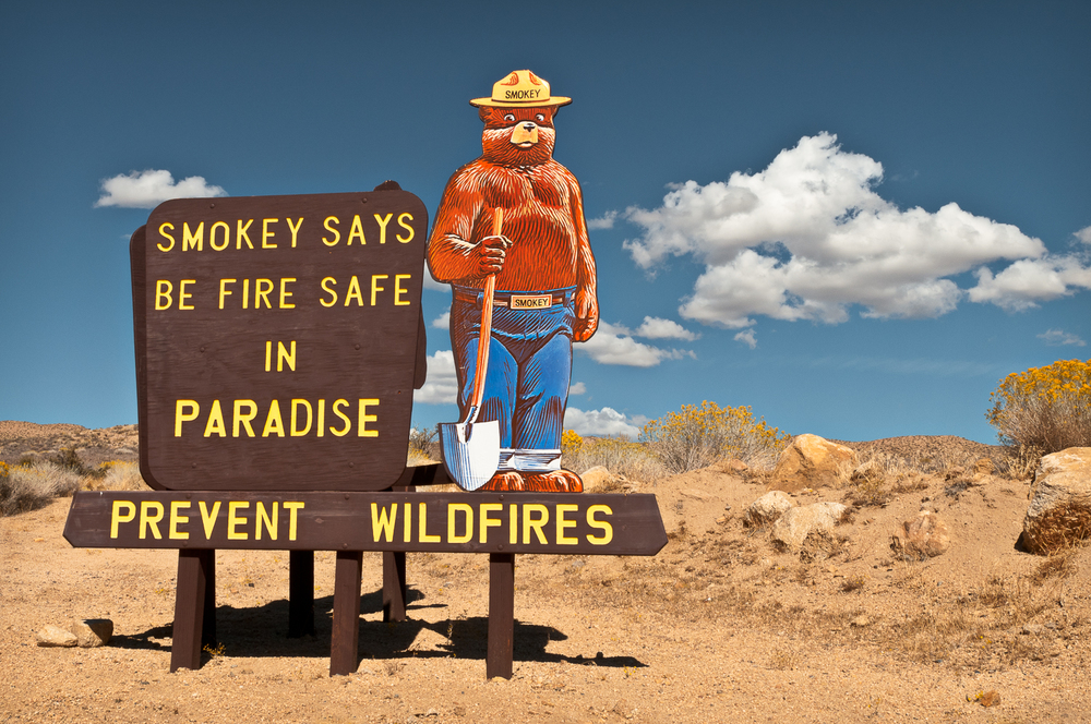 Smokey Bear, Paradise, CA USA