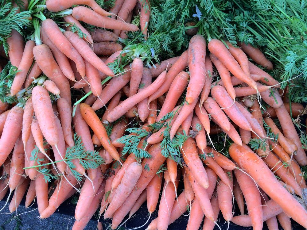 Farmer's Market - carrots.jpg