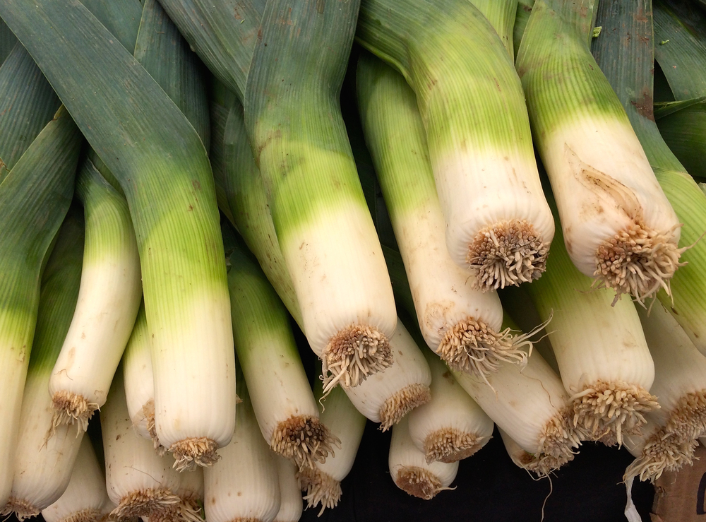 Farmer's Market - onions.jpg