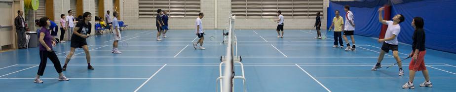 Badminton_Semifinal_Pan_2007.jpg