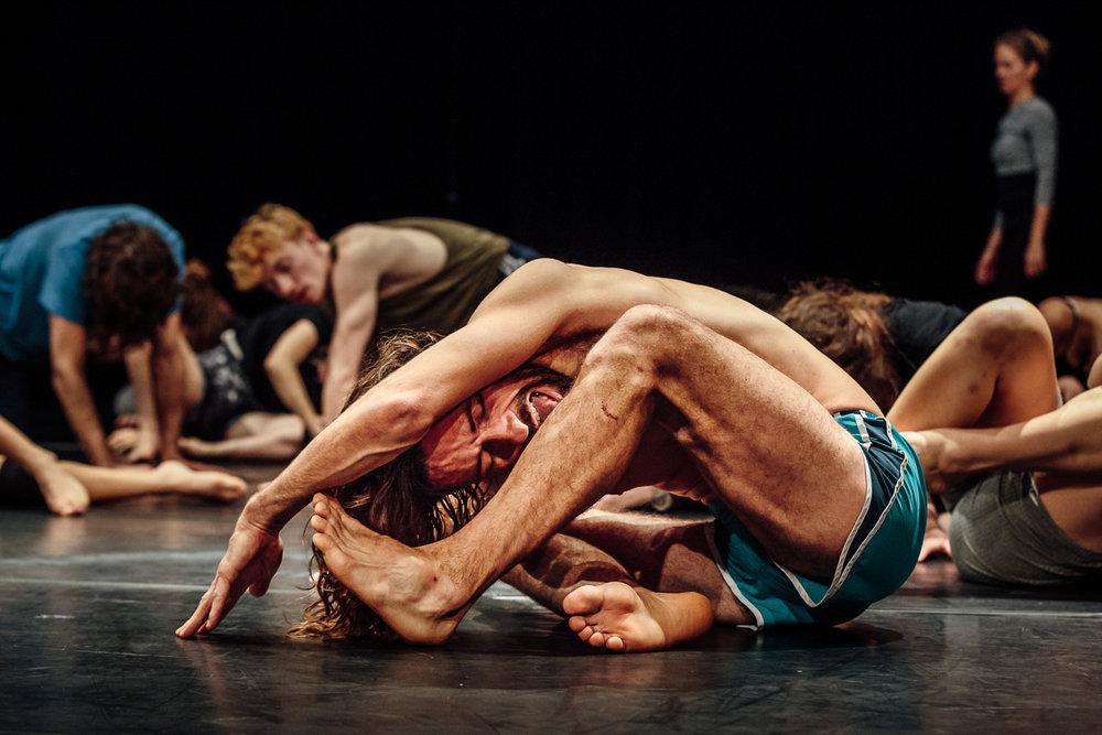 Troubleyn Jan Fabre |Masterclass    Belgium Rules/Belgian Rules   Antwerp, 2016