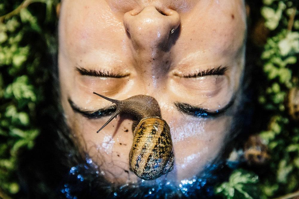 Shabnam Shabazi | Snail Portrait