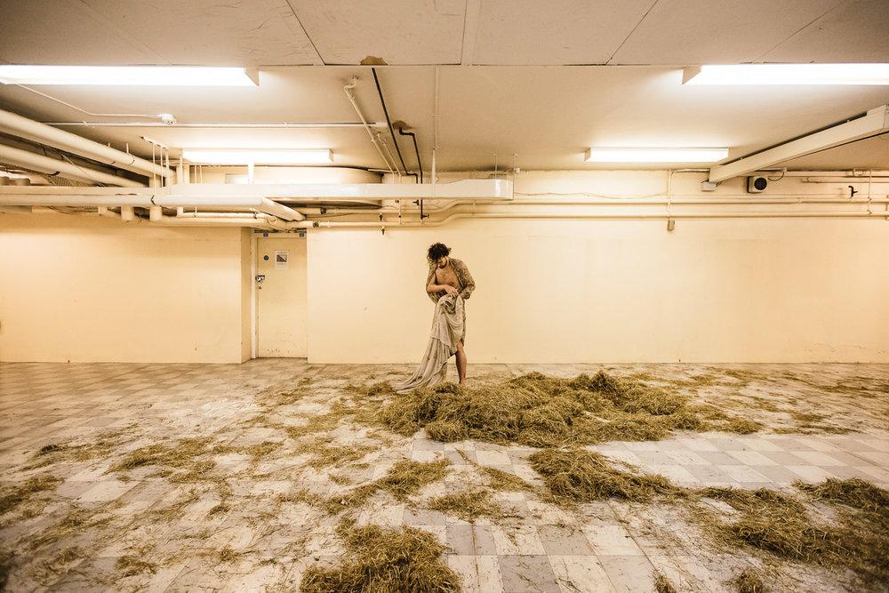 Robert Hardaker | Plough Your Own Furrow