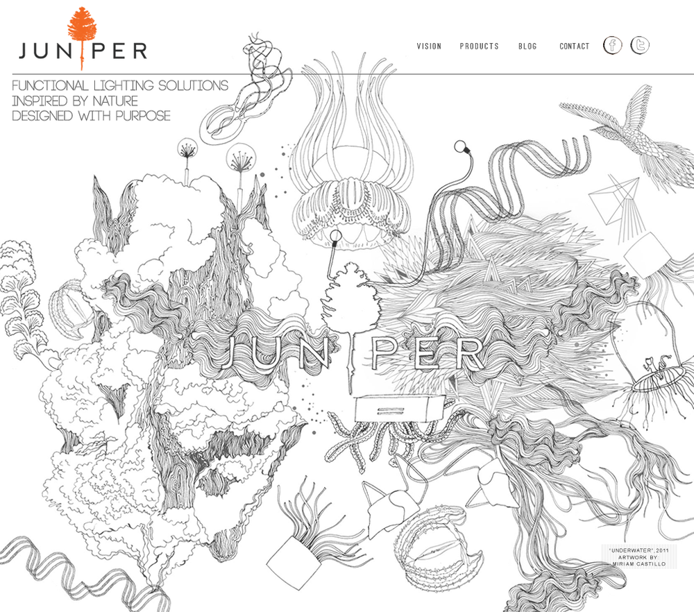 JUNIPER   Illustration for Homepage website | 201 1