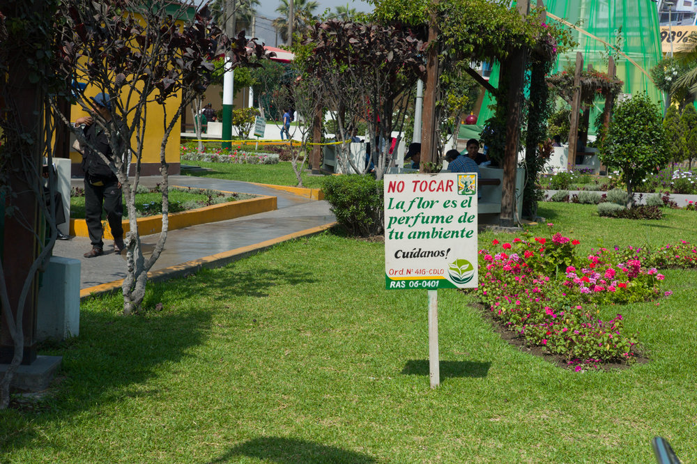 "Main district plaza, adjacent to Los Olivos's municipality. Sign reads ""do not touch, flowers are the perfume of your environment. Take care of us."""
