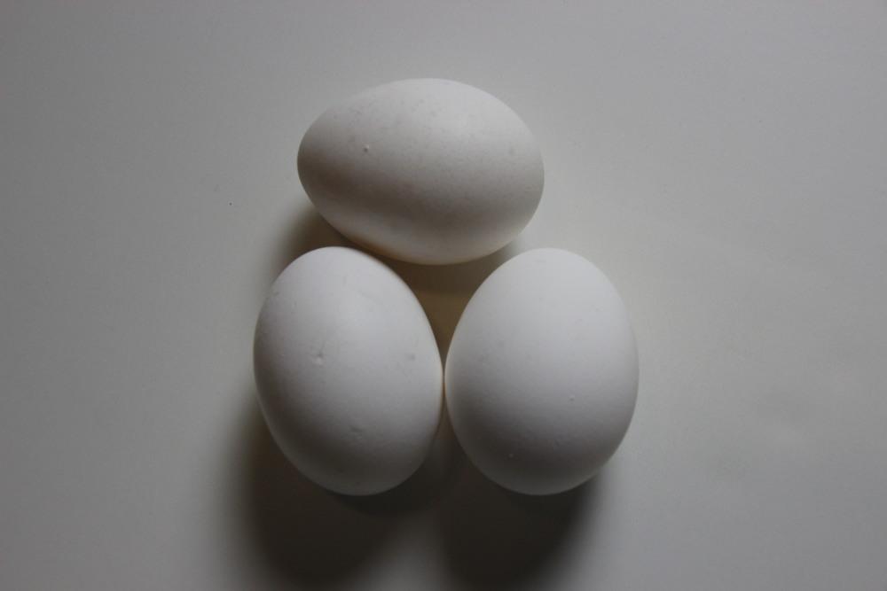 just 3 eggs.JPG