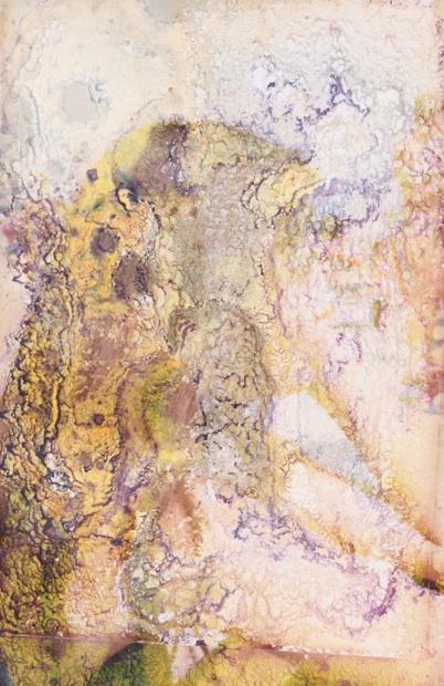Sans titre   C-print on Hahnemuhle paper  65x100 cm  2016
