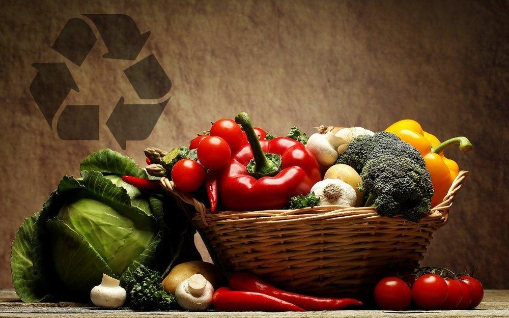 foodrec-1024x640-1024x640.jpg