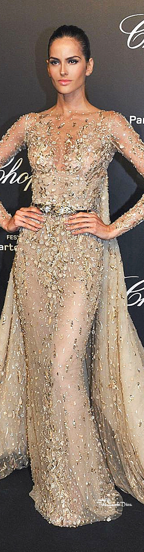 Izabel Goulart in Zuhair Murad Couture                                        Best Image