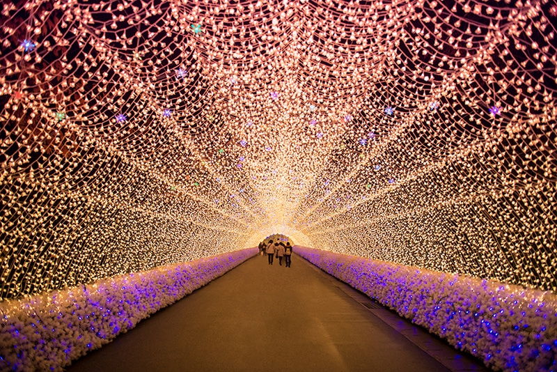 Nabana No Sato garden, winter illumination, Nagoya, Japan