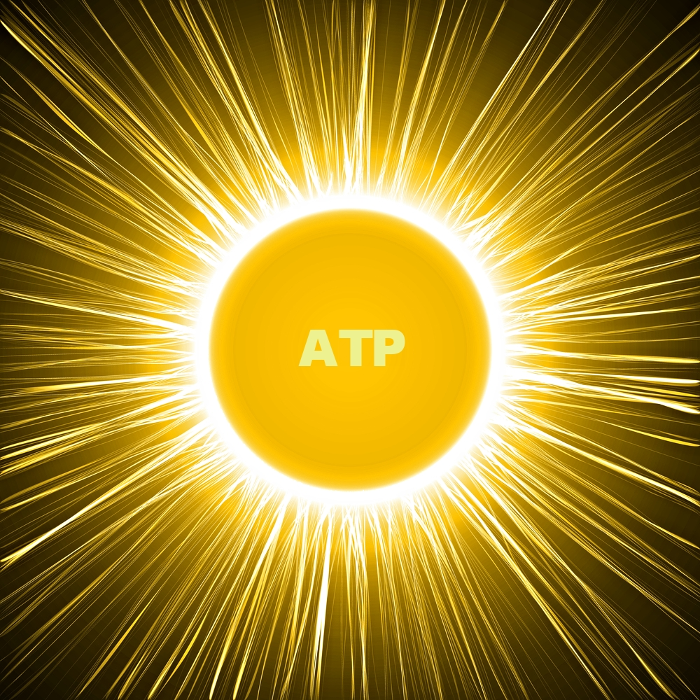 ATPmolecule.jpg