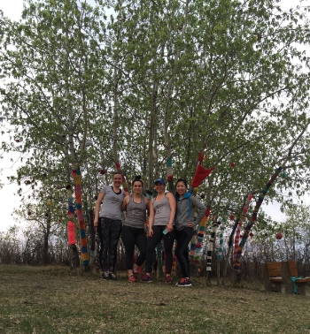 At the top of the Whitemud ravine stairs is this awesome crochet/pom pom tree project.