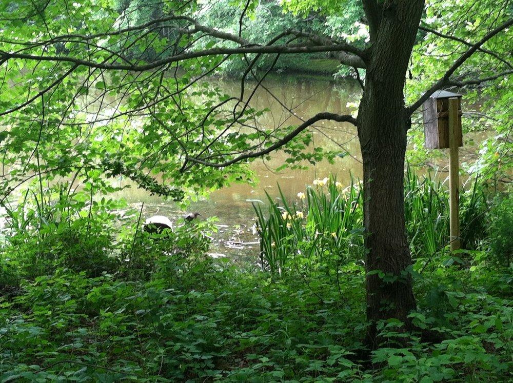 lake-saradoolittle.com