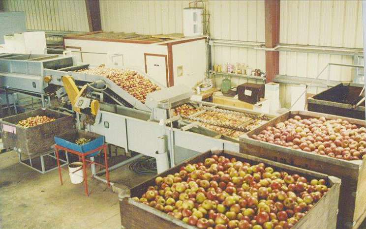 Processing Apples