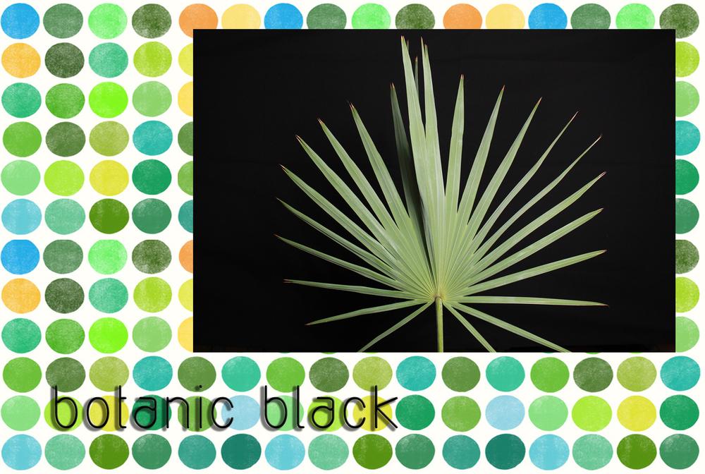 botanicblack.jpg