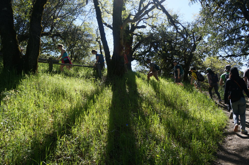 043017_01_hike-castlerock.JPG