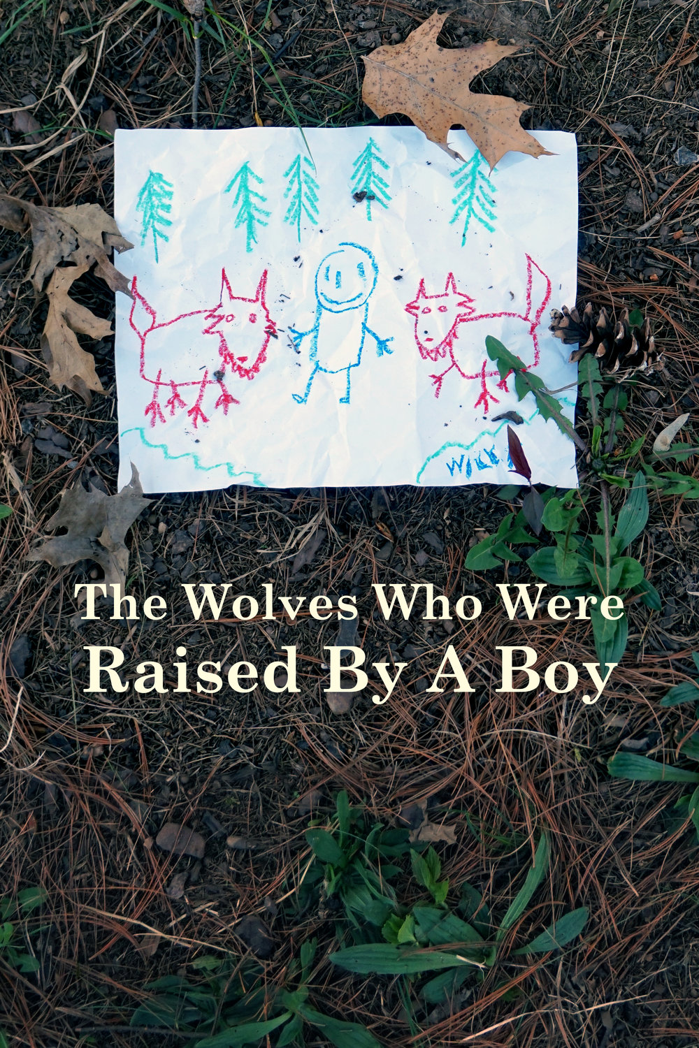 The documentary follows Will Finch, a boy abandoned by his parents in the Alaskan Wilderness who discovered a wolf packand taught them important lessons about survival and Axe body spray.
