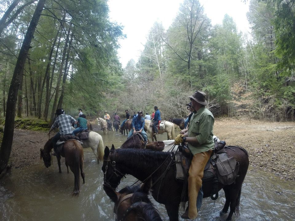 Horses replenish in creek during guided horseback ride