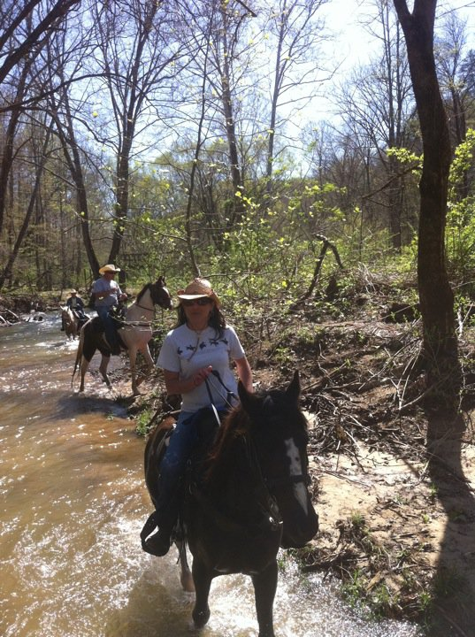 Guided horseback tour into the Big South Fork